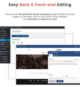 how to choose the best theme for your site 5