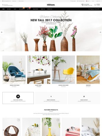 HiStore-WordPress Theme