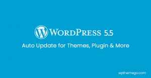 WordPress 5.5 New Features