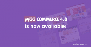 WooCommerce 4.8 is now available!