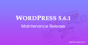 WordPress 5.6.1 Maintenance Release