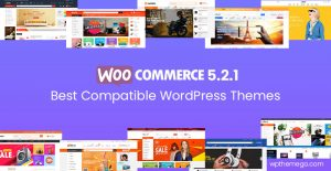 WooCommerce 5.2.1 Themes - Top Best Recommended Items!